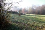 IMG_7377-arboretum-allegee