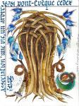 16-227 - Oeuvre de Sylvie GUINCHARD ... ... ... ... 16X21 - 30 €